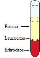 microhematocrito