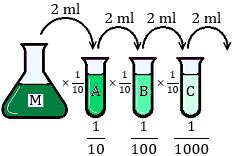 Explicamos cómo realizar una dilución seriada. Técnicas de laboratorio.